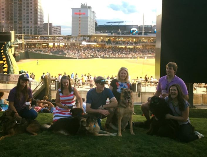 The team & their pups go to Bark in the Park.