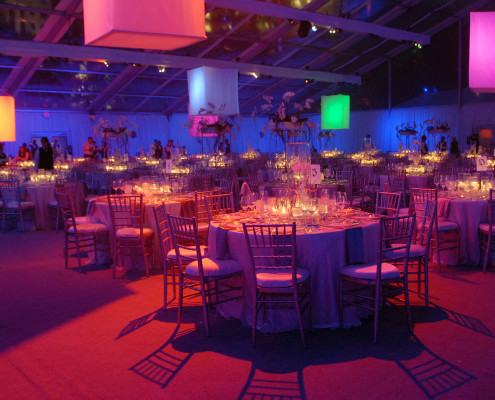 A large tent was transformed into an elegant evening dinner for 750 people and a surprise entertainer.